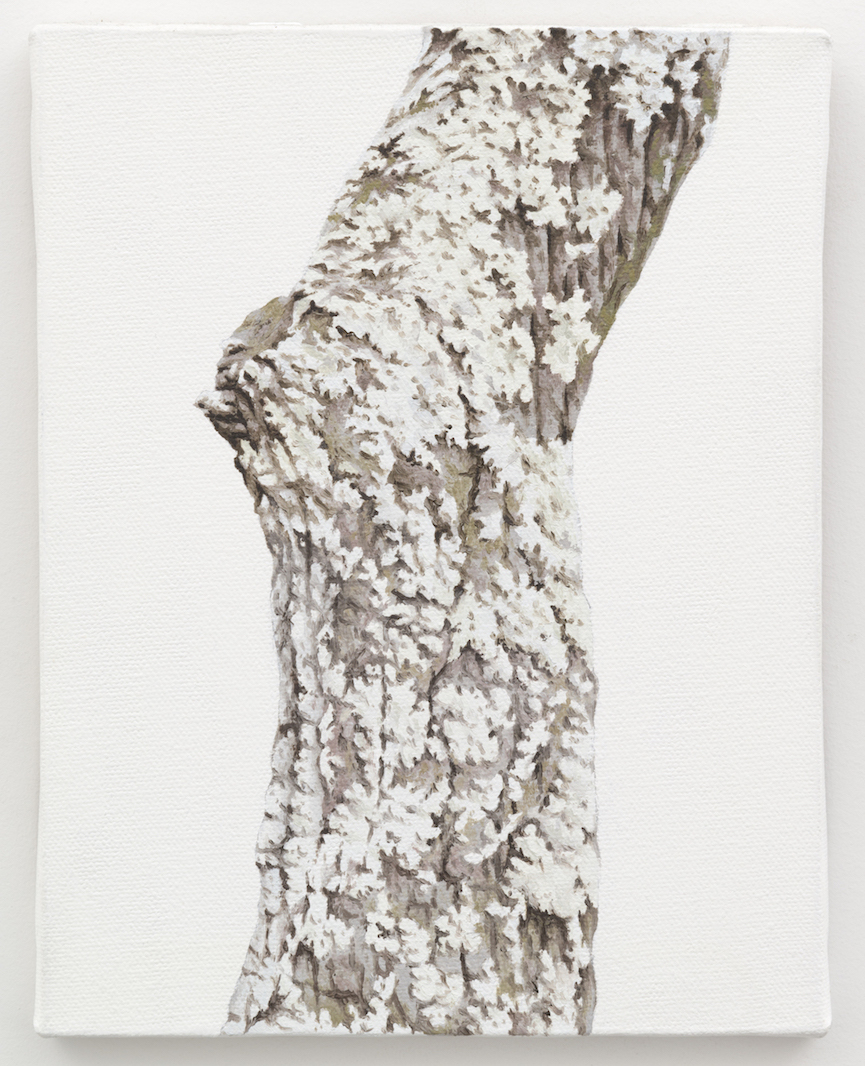 "Trunk No. 2,   2013,   oil on canvas 8 7/8"" x 6 7/8"""