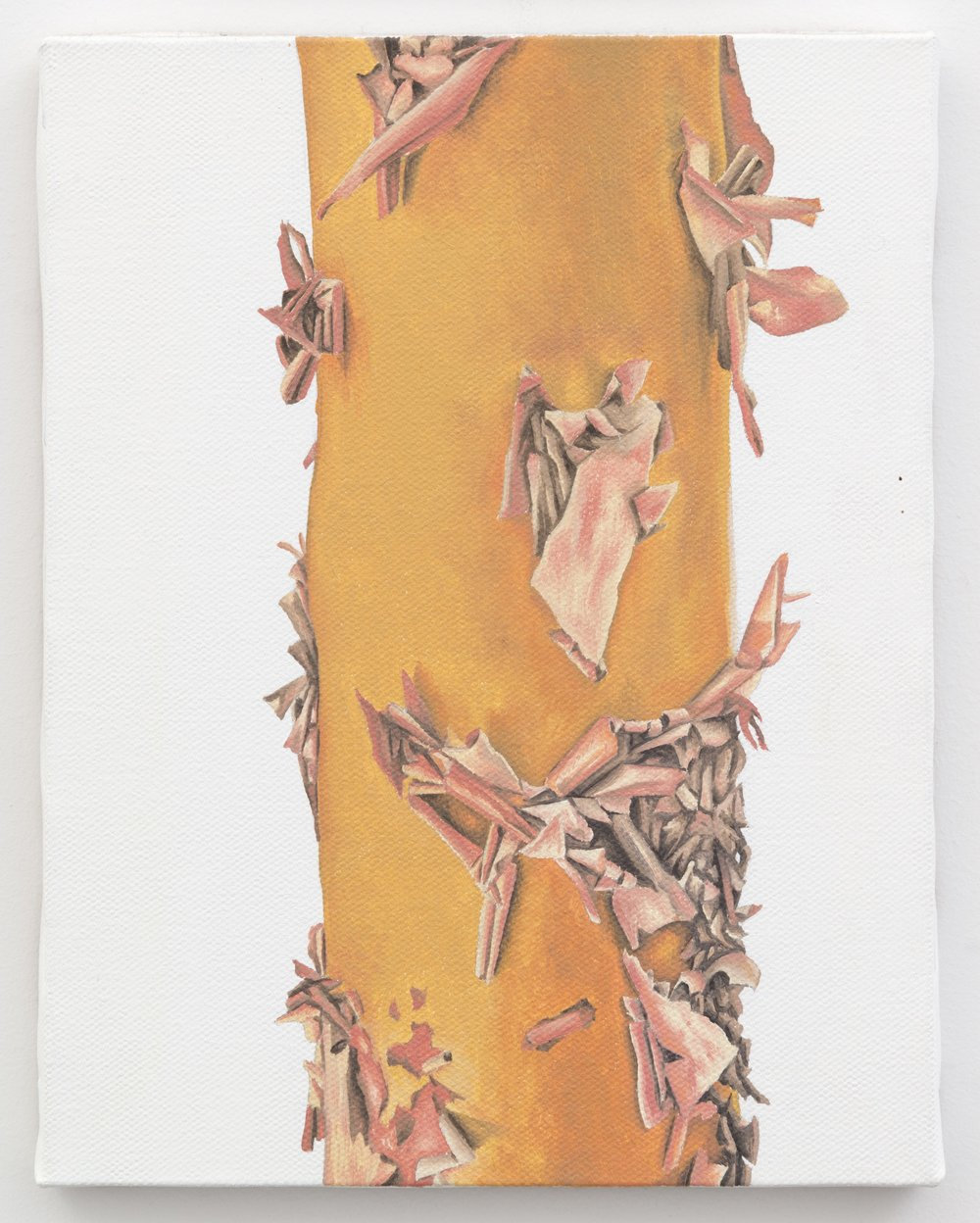 "Trunk No. 4,   2013,   oil on canvas 8 7/8"" x 6 7/8"""