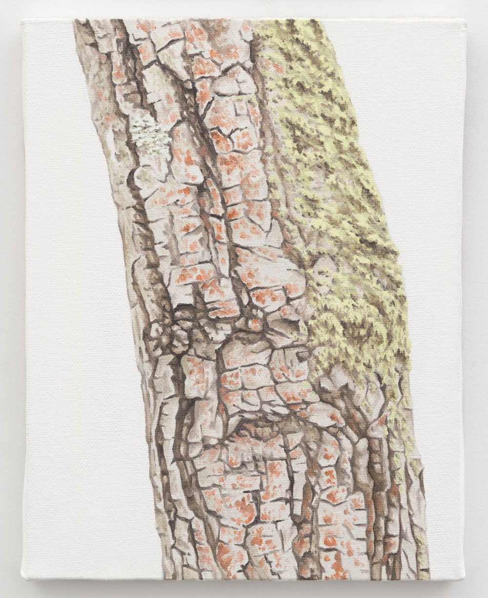 "Trunk No. 6,   2013,   oil on canvas 8 7/8"" x 6 7/8"""
