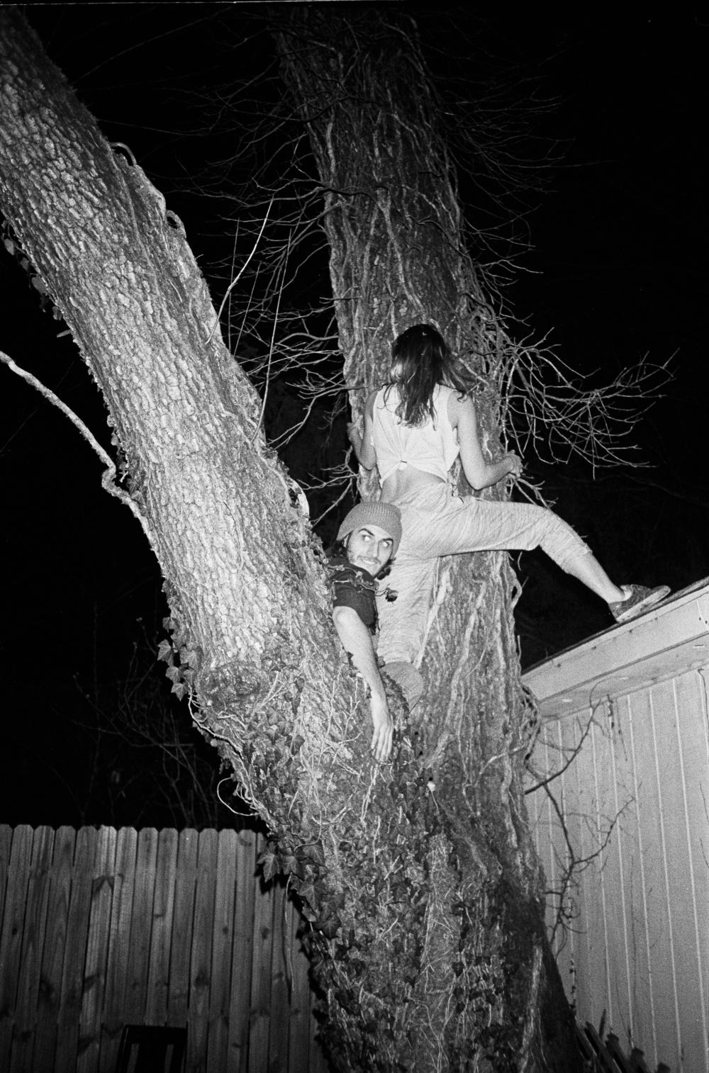 TreeClimbBaxterBldg copy.jpg