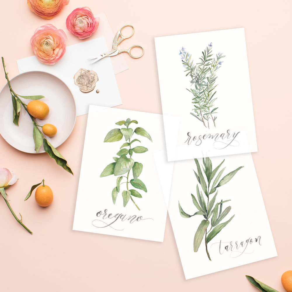 Cami Monet Watercolor Herb Set | Custom Watercolor Wedding Invitations