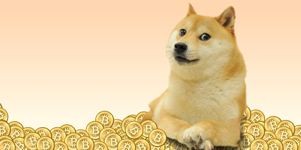 Dogecoins help send Jamaican bobsled team to Sochi Olympics - February 2014