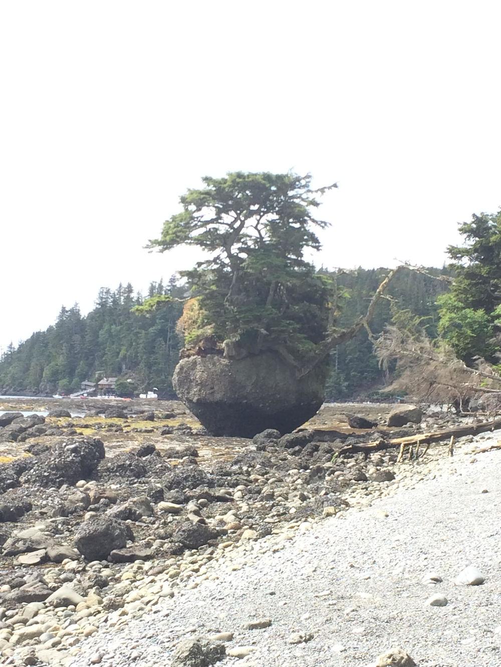 flowerpot rock.jpg