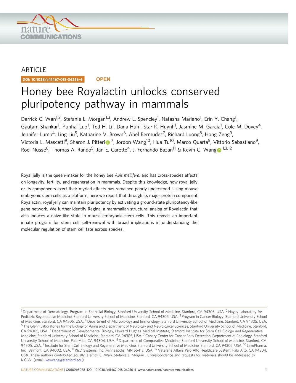 Honey bee Royalactin unlocks conserved pluripotency pathway in mammals.jpg
