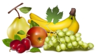 free-vector-fruits-vector_004708_3.jpg