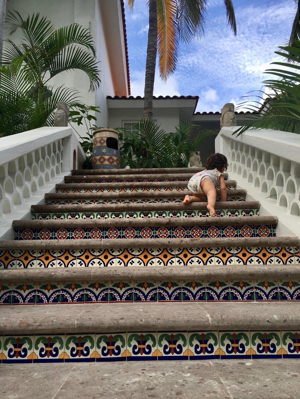 Palmilla Los Cabos1