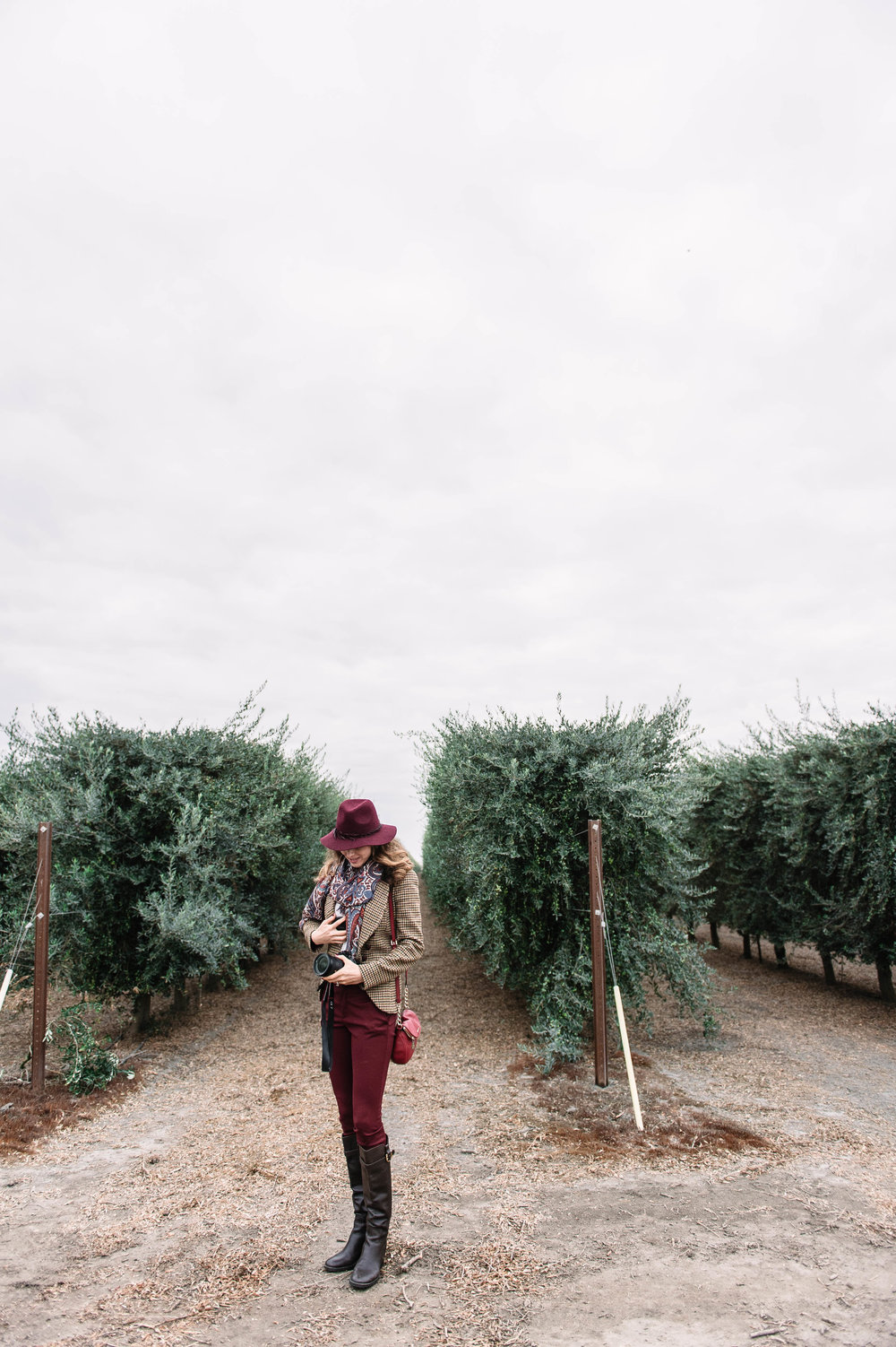 At olive grove.jpg