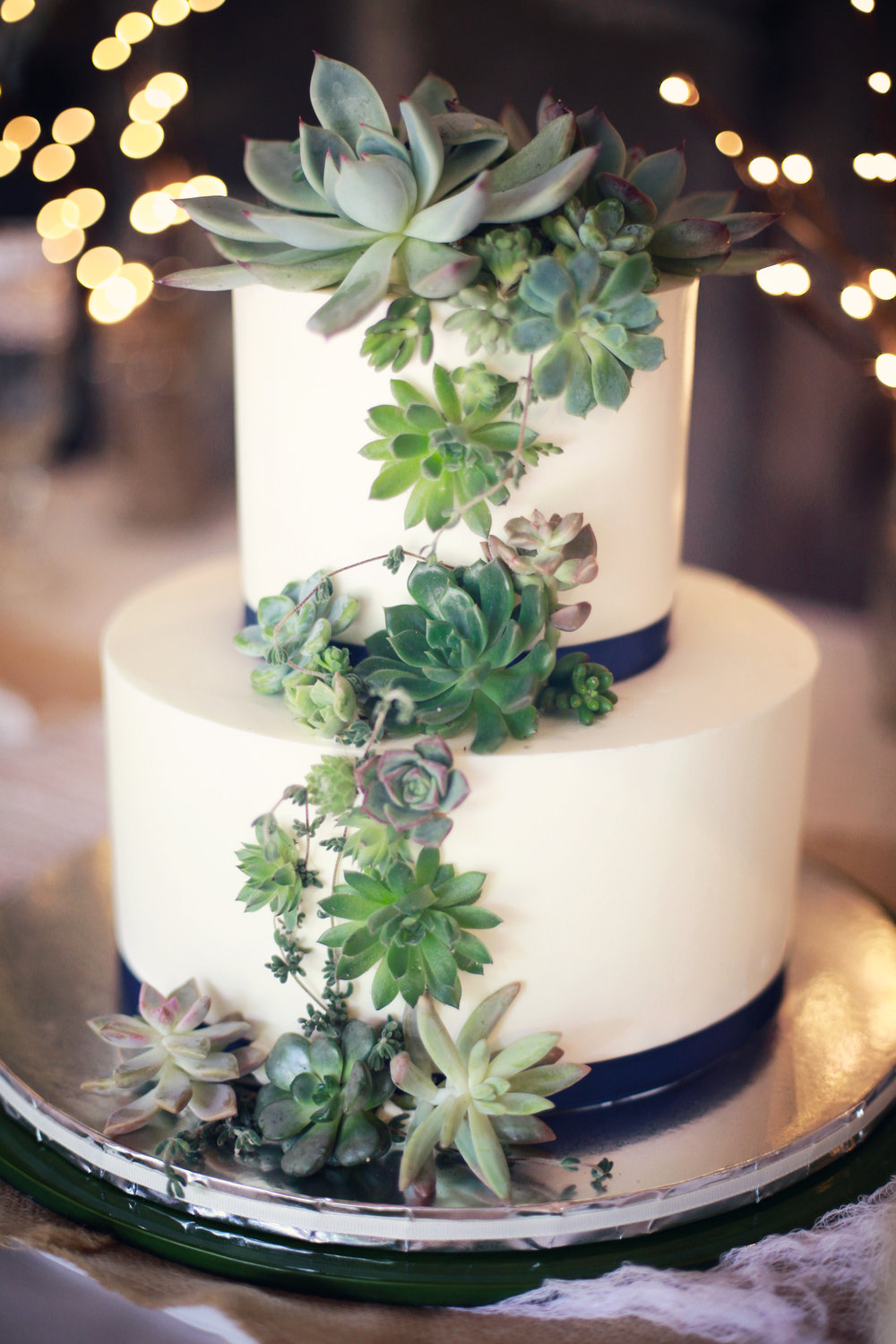 wedding cake with succulents by branches & vine
