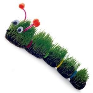 grassy-caterpillar.jpg