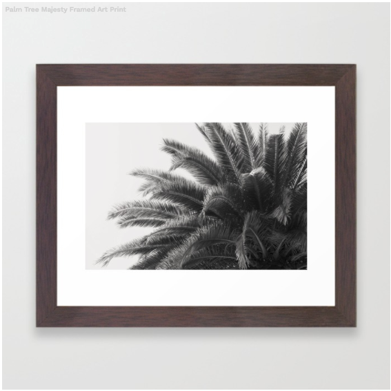 Framed Palm Print from my California Collection
