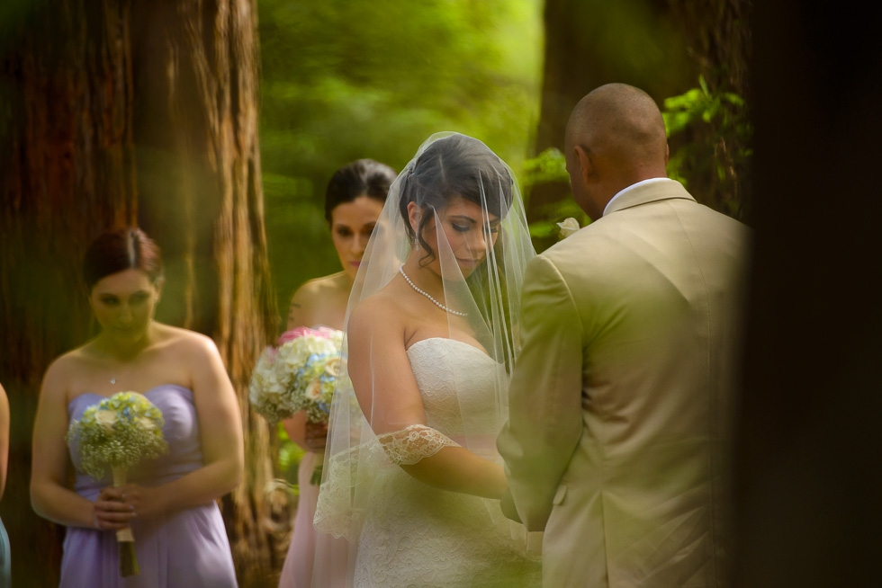 Roaring Camp Railroads wedding