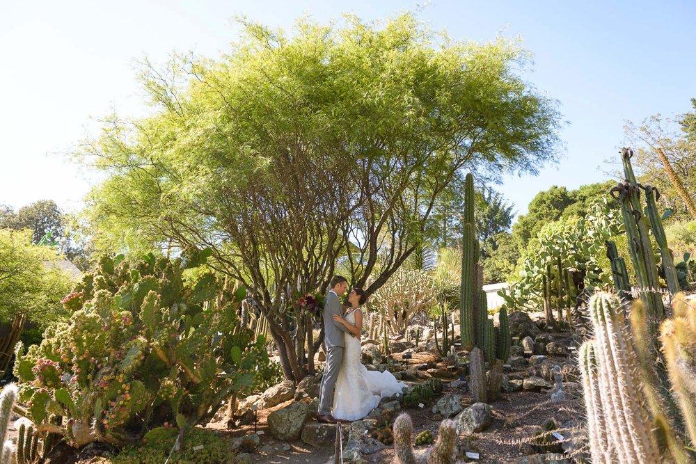 UC Berkeley Botanical Gardens Wedding
