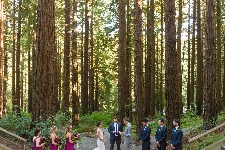 UC Berkeley Botanical Gardens Wedding: Gabby & Dan — Forty-Third Ave ...