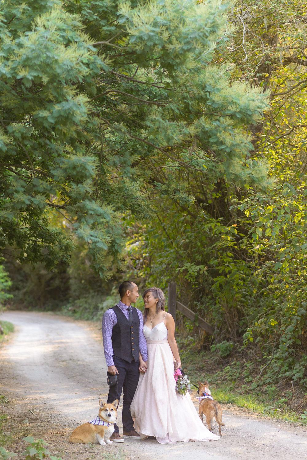 Pescadero wedding