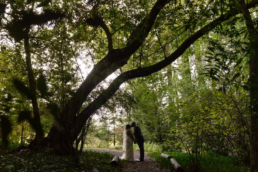 Bride and groom under oak tree at Old Mill Park