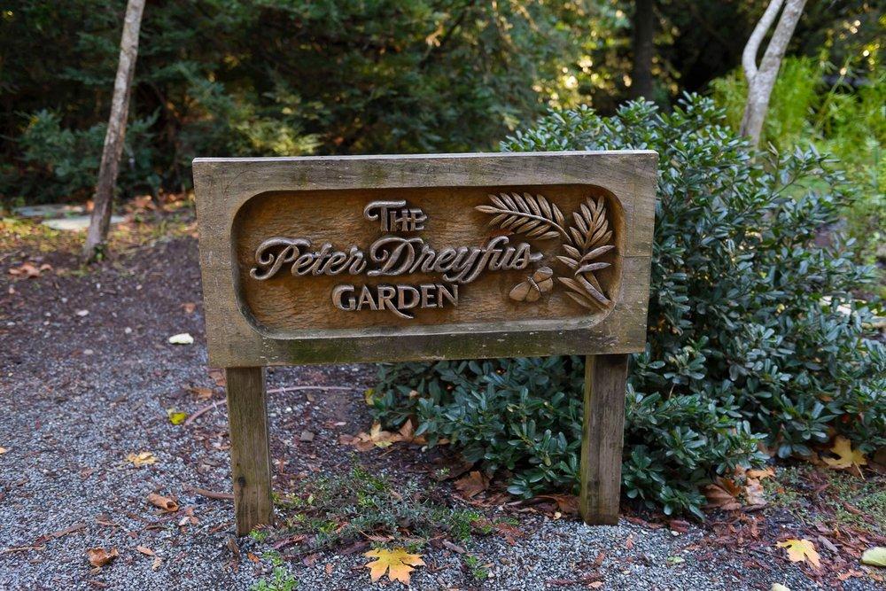 The Peter Dreyfus Garden
