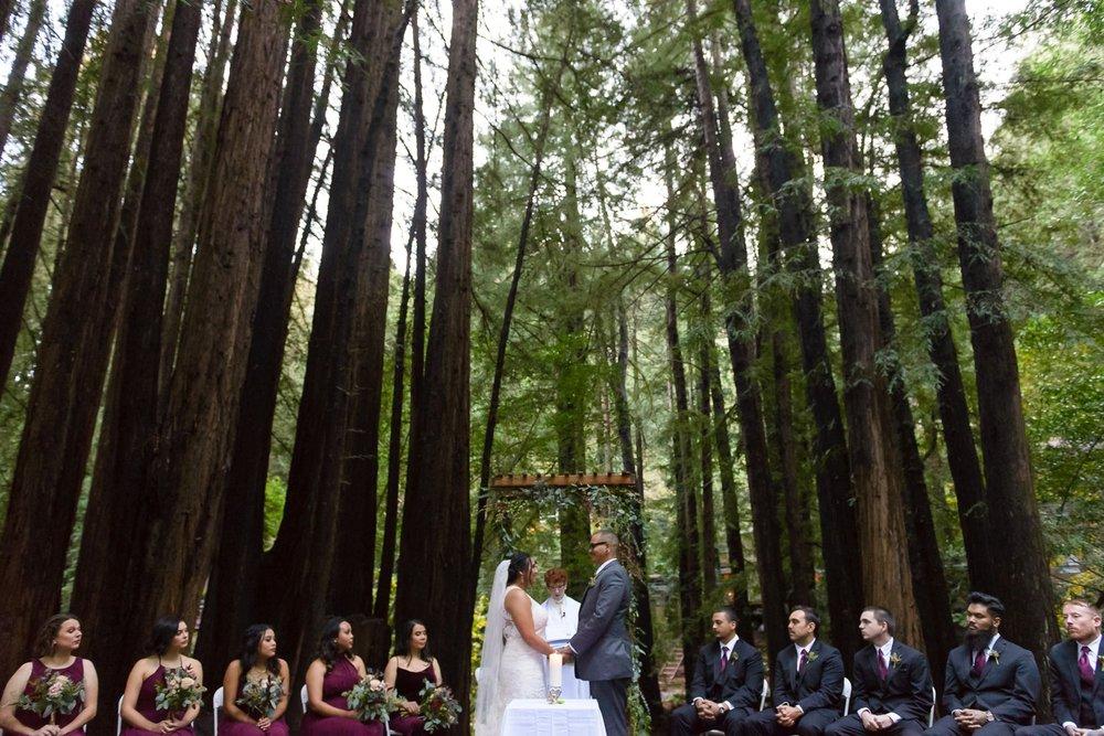 Old Mill Park wedding