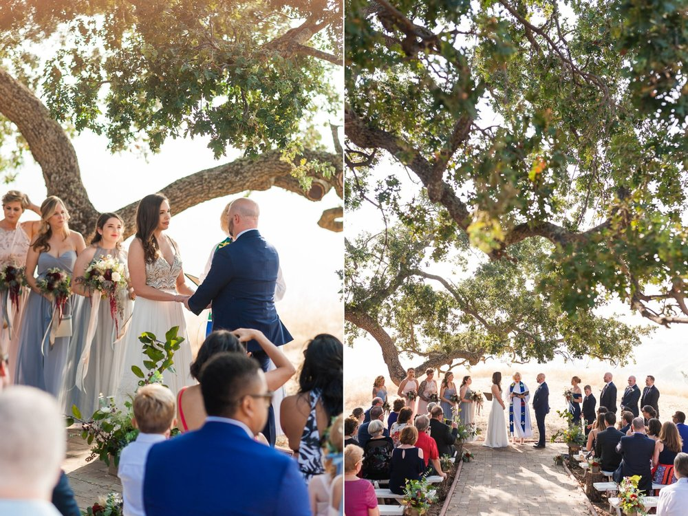 Bride and groom under an old oak tree