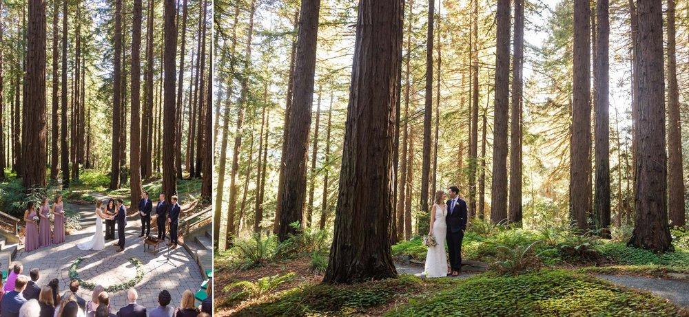 Wedding ceremony at UC Berkeley Botanical Garden redwood grove