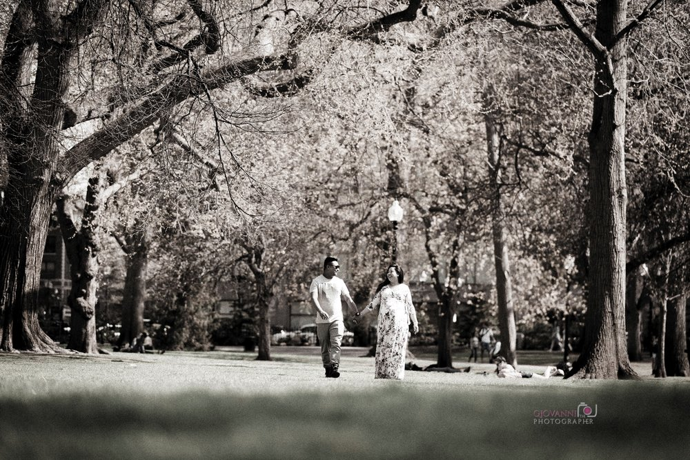 314A2014 Giovanni The Photographer Boston Engagement - Maternity - Newborn Photography Vikrant & Rtunasnet WM 35.jpg