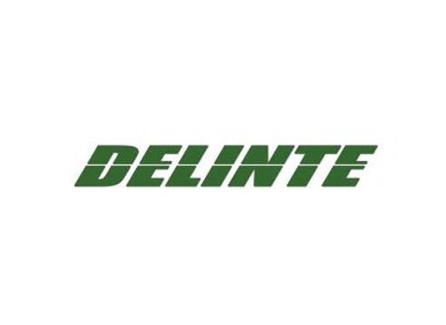 Speedtek_tires_delinte.jpg