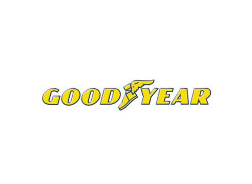 Speedtek_tires_goodyear.jpg