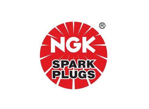 Speedtek_custom_parts_ngk.jpg