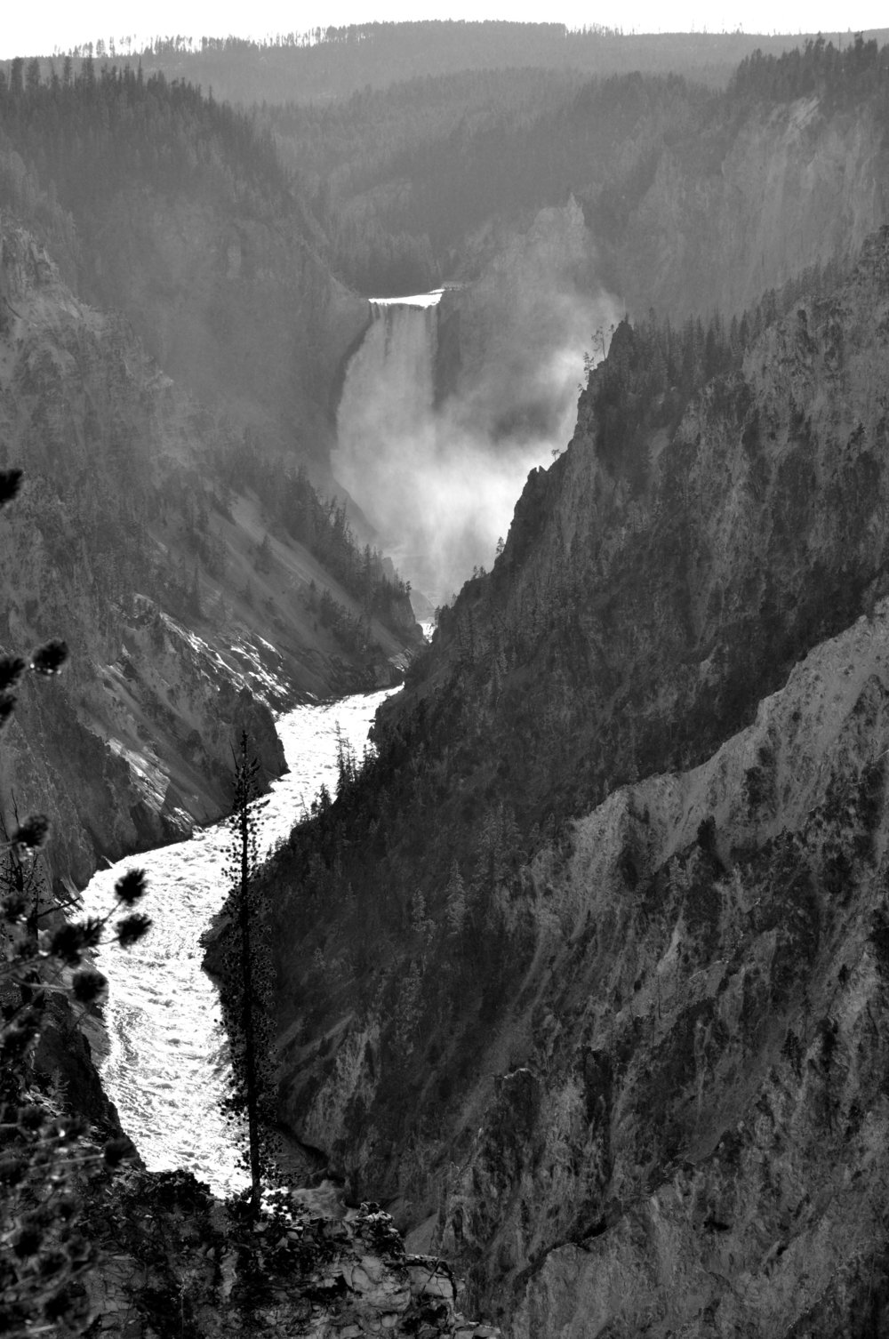 Yellowstone+2011+745.jpeg