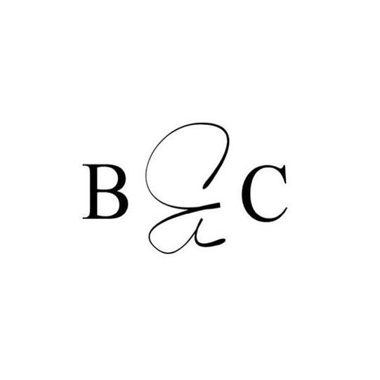 Sneak peak // New logo design for @bowieandco_  coming very soon!! ✨