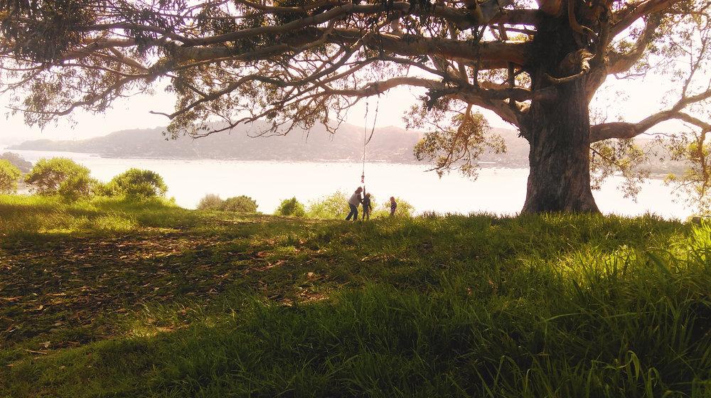 Family at Hippy Tree