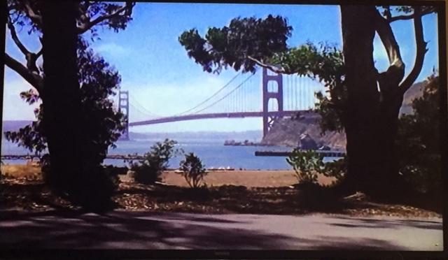 Pretty bridge shot. Interesting view.