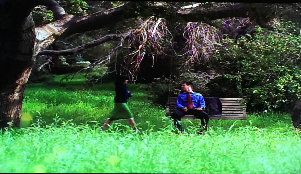 Andy and Prue meet at a swing.