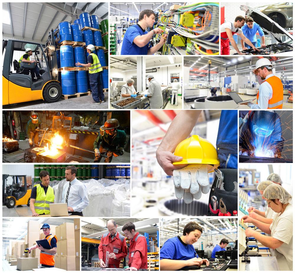 Bauindustrie, Elektroindustrie, Datenverarbeitung, Logistik, chemische Industrie, Nahrungsmittel-Industire, Maschinen- und Anlagenbau, diverse Handwerksbereiche, Stahlindustrie