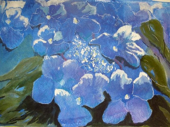 18.-Blue-Hydrangeas_670.jpg