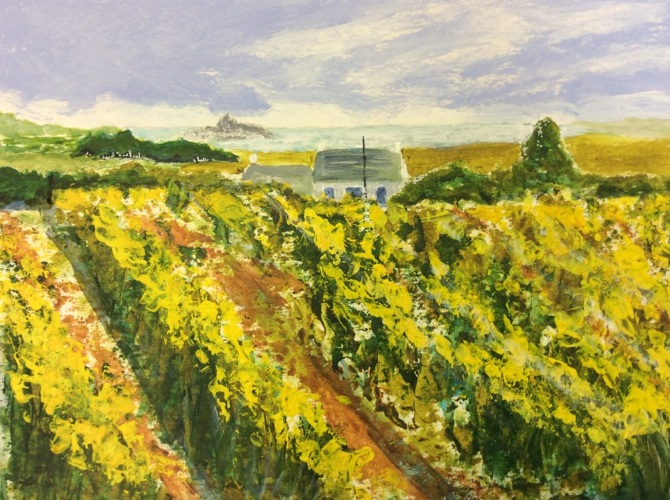 38.-Daffodil-field-Ludgvan.2_670.jpg