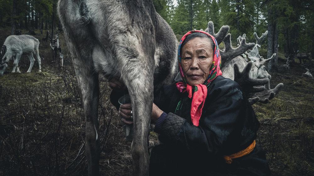 muenchmax_mongolia18.jpg