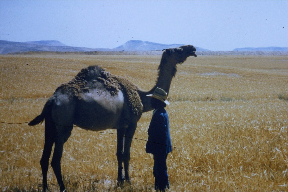 musa-salam-and-camel-1990.jpg