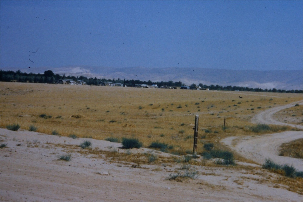 bedouin-landscape-camels-1990.jpg