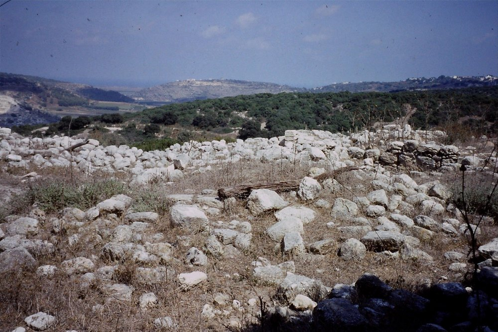 Roman farm, Carmel hills. Summer 1993. Credit: Eleanor Scott