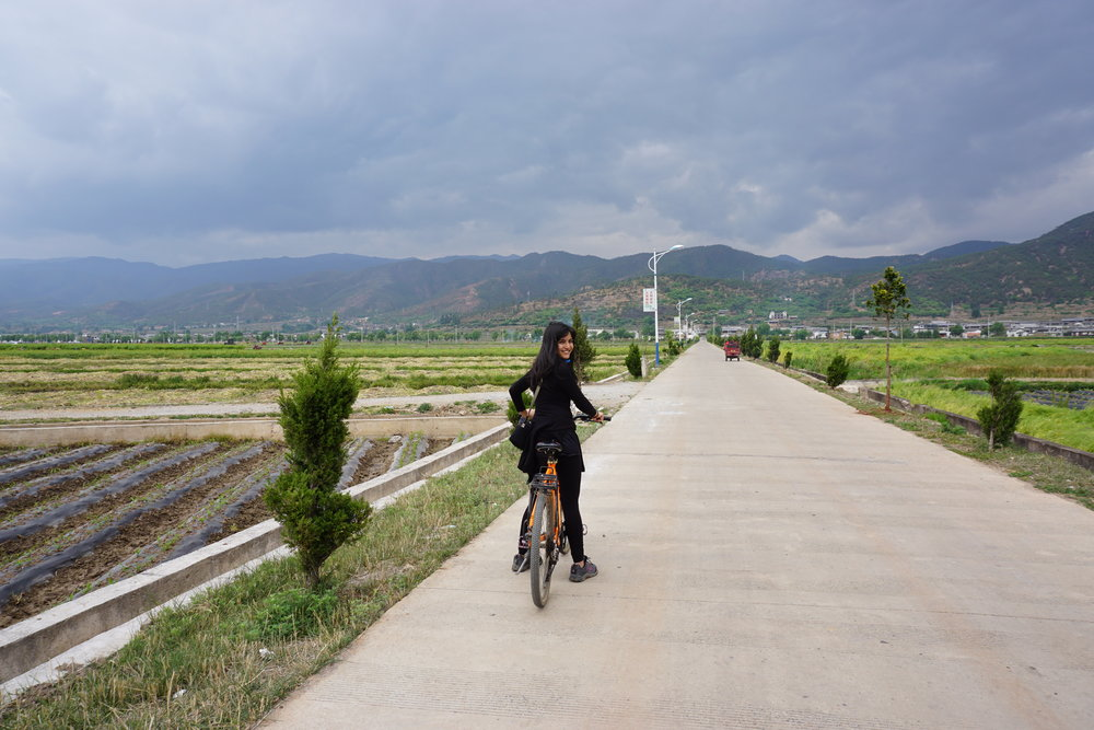 Riding to Shaxi town while taking in the green landscapes