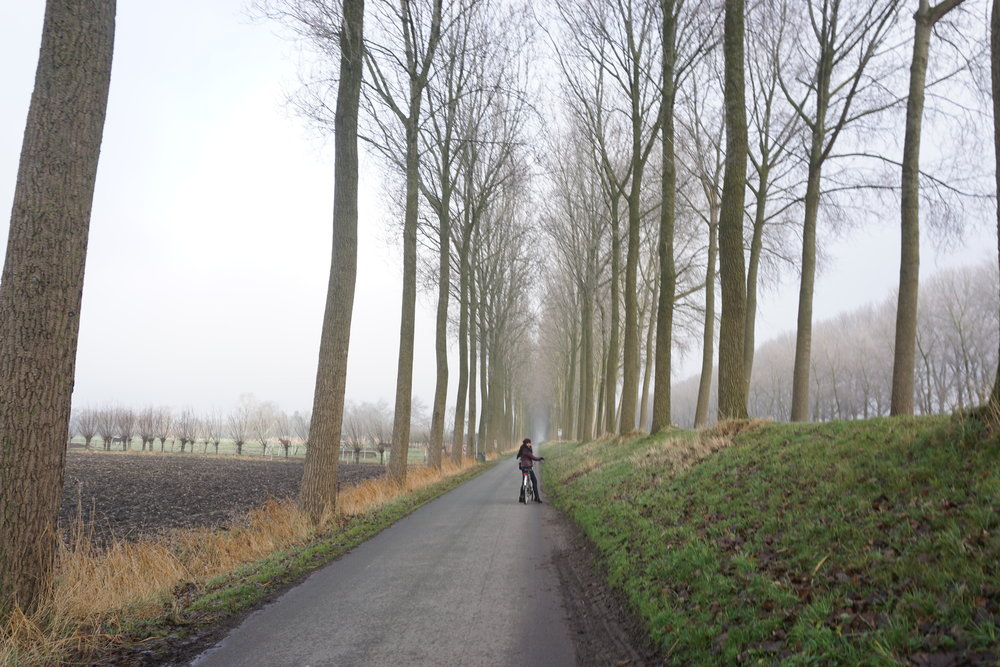 Cycling in Bruges, along the canals being one of the best places to travel in December and January
