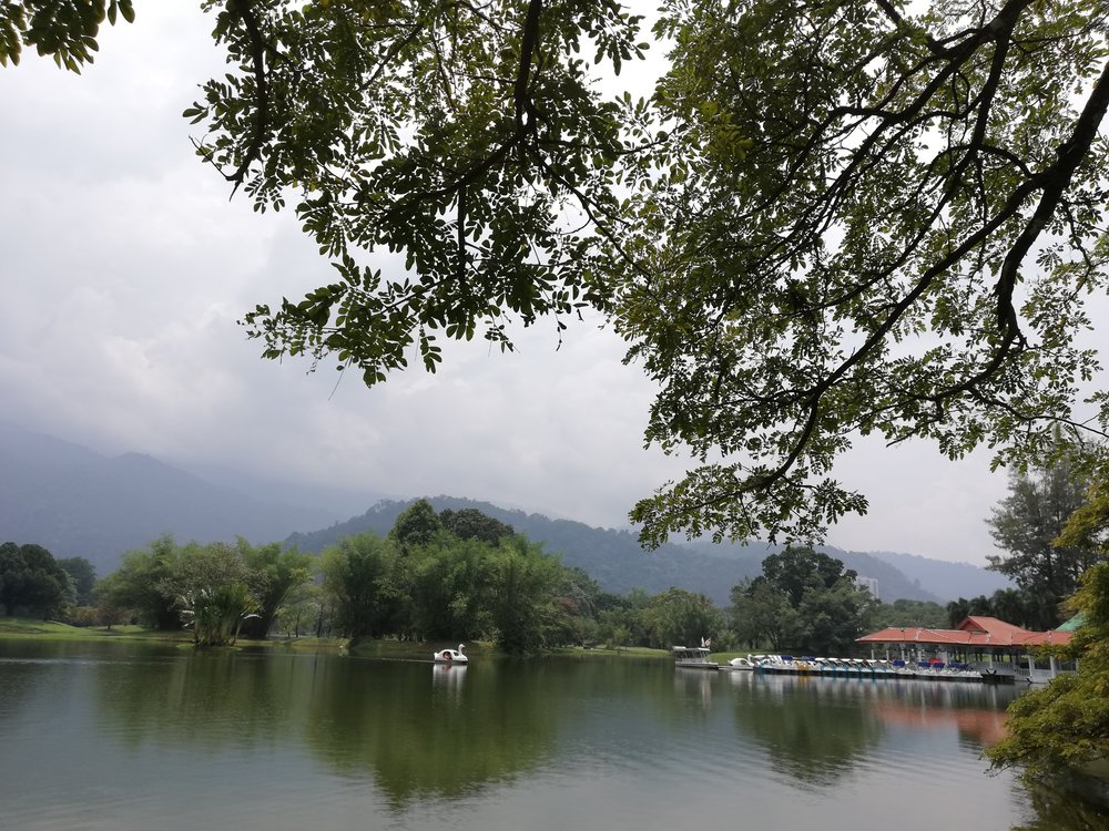 Taiping-Lake-Garden-Malaysia-Itinerary.jpg