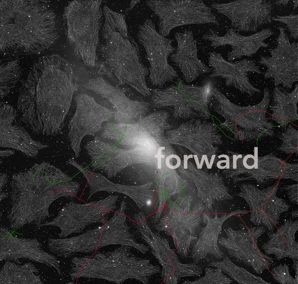 Sonya Dyer,  Forward  (2018). Digitalt billede. © Sonya Dyer