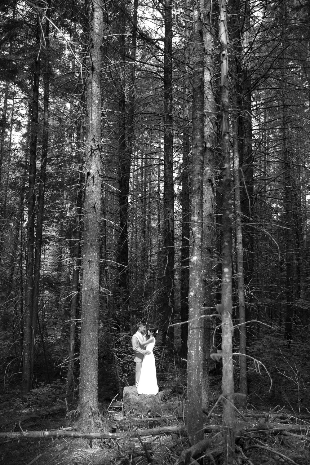 Wedding Photos Mt Rainer Suntop Fire Lookout Washington22.jpg