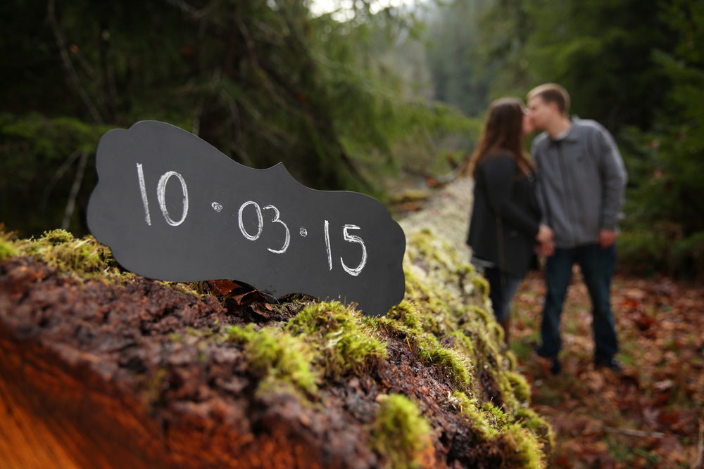 Engagement Photos Olympic Peninsula Washington09.jpg