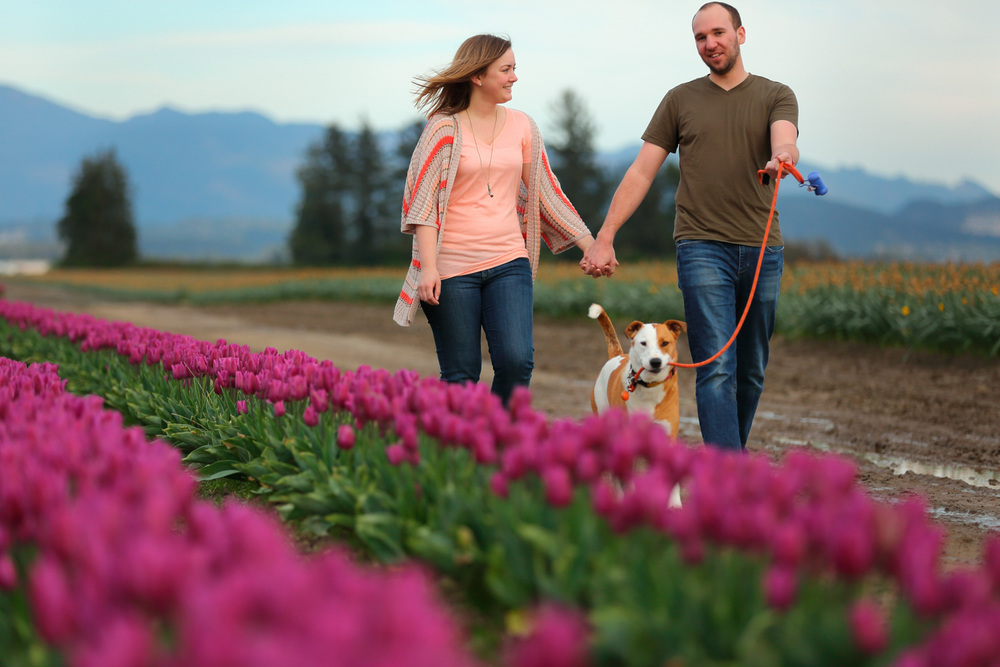Engagement Photos Tulip Fields LaConner Washington03.jpg