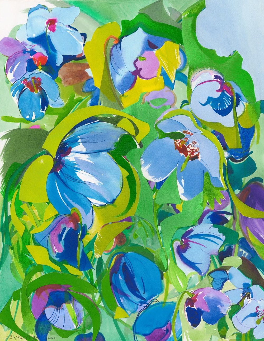 lothian blue poppies