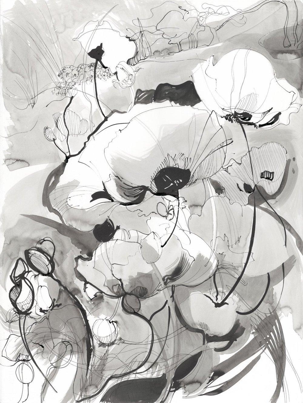 (31) Poppydraws