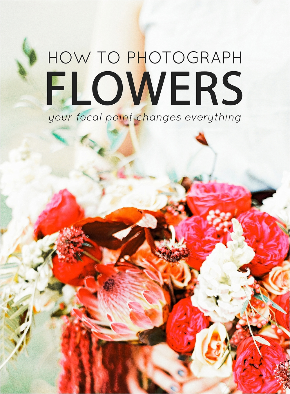 How to photograph flowers - Your Focal Point Changes the Entire Image - The Jordan Brittley Blog (www.jordanbrittleyblog.com)