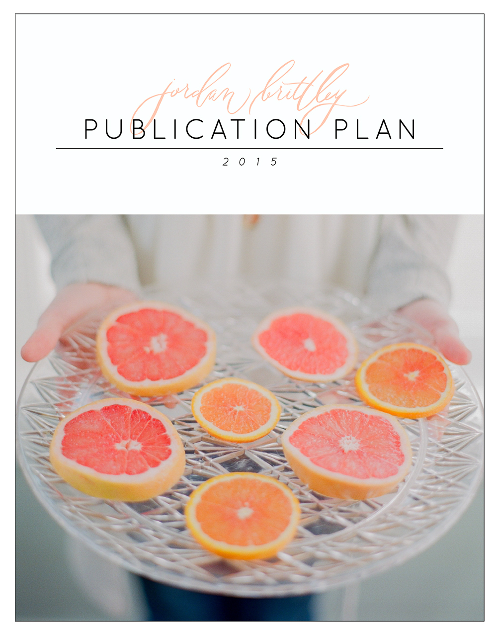 Jordan Brittley Publication Plan 2015